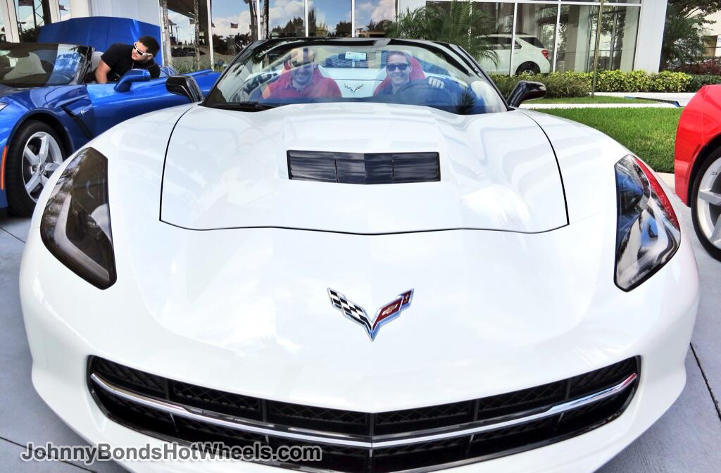 2014 Corvette Stingray Grill